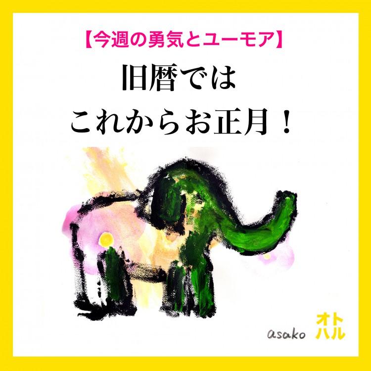 1月29日麻子さん